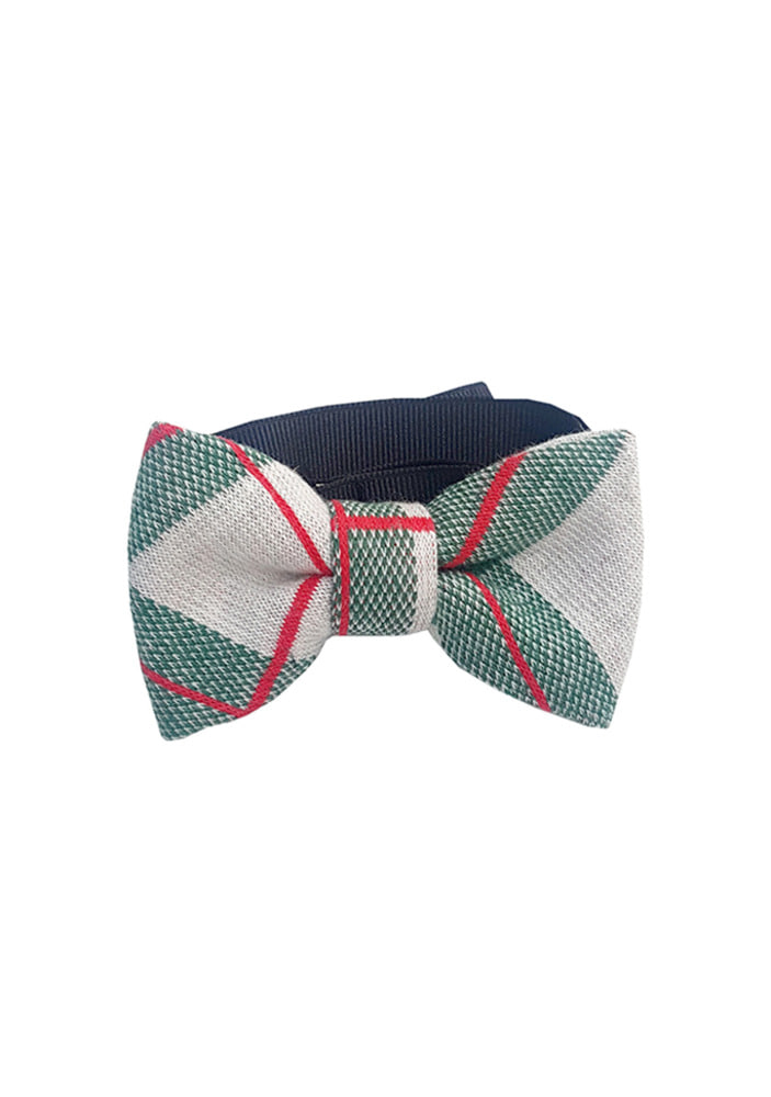 Red Check Bowtie_Green