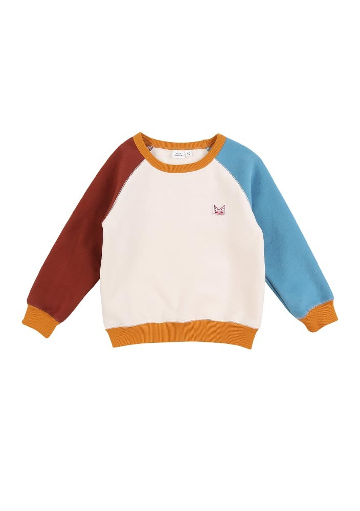 Multi-color Sweat shirt_Baby
